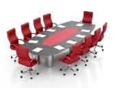 directorship checks